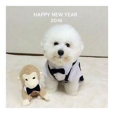 * 明けましておめでとうございます 今年もよろしくお願いいたします。 * #昨年は暖かいいいねやコメントありがとうございました。…
