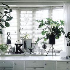 My Shelf/観葉植物/IKEA/ブラインド/ディスプレイ/北欧...などのインテリア実例 - 2016-10-19 21:55:57 | RoomClip (ルームクリップ)