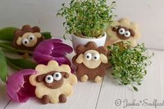 Lustige Osterplätzchen - sweets for every time - Ostern Cookie Recipes, Snack Recipes, Dessert Recipes, Desserts Ostern, Cake Games, Pumpkin Spice Cupcakes, Easter Cookies, Food Humor, Ice Cream Recipes