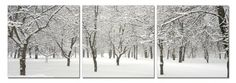 First Snow. Contemporary Art, Modern Wall Decor, 3 Panel Wood Mounted Giclee Canvas Print, Ready to Hang A1099 $69.99 (save $119.01)