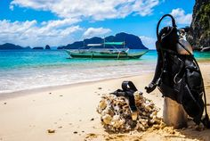 El Nido is famous for the hundreds of rock formations seeming to pop up everywhere. But after the sun goes down and the view is gone head below water for a night dive to see some unique creatures not found during the day. Discovered by A Cruising Couple at Dilumacad Island, El Nido, #Philippines
