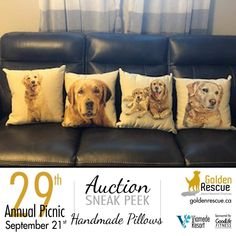 "Picnic Auction Sneak Peek! These Handmade Pillows are 'all Golden"" and were lovingly made and donated by Jane Bell.  Another one of the spectacular items up for auction at this year's picnic. Make sure you're there so you don't miss out! ***If you are bringing an auction item to the picnic, please email sa@goldenrescue.ca with the information. We need to ensure we have this information ahead of time so that we can have the bid sheets ready and items listed on the auction list. Thank you… Auction Items, Handmade Pillows, Life Is Good, Picnic, Life Is Beautiful, Picnics, Handmade Cushions"