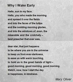 Why I Wake Early poem by Mary Oliver. Hello sun in my face. Unexpected Friendship Quotes, Short Friendship Quotes, Funny Friendship, Sun Poem, Poem A Day, Pretty Words, Beautiful Words, Beautiful Poetry, Poems By Famous Poets