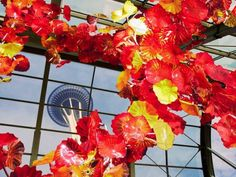 Dale Chihuly's Vibrant Glass Sculpture Garden