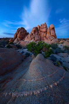 Twilight glow, Joshua Tree National Park, California, USA ~ NIght Glow by Ian Plant on 500px*