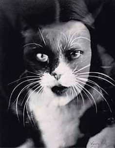 The Cat and I - by Wanda Wulz (one of first female surrealist photographers)