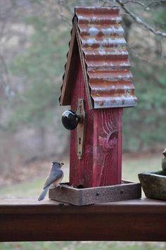 Recycled Bird Feeder birds birdhouse wildlife reuse recycle doorknob feeder country