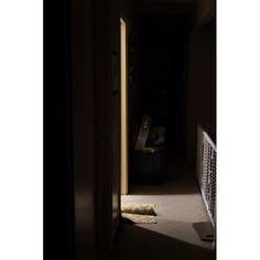 Location: Long Island New York  Scene: Rug  #whateveryoudoworkatitwithallyourheart ____________________________________ #longisland#newyork#ny#yellow#rug#door#entrance#line#open#lighting#minimalist#minimalistic#shadow#minimalism_world#indoors#streetphotographers#fujifilm#fuji#fujifeed#room#home#details#fujifilm_Xseries#fujifilm_us#islandstrong#lilocal#newsday#exploreliny#discoverlongisland