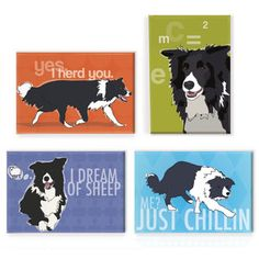 The Border Collie way...