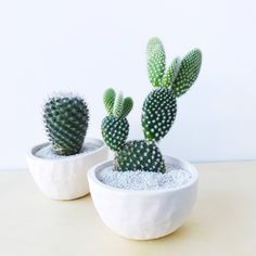 The Bunny Ear Cactus and White Cactus Cup Ceramic Planter is everything you need for a low maintenance, long lasting, minimal plant and planter for any space—that even the worst plant killer couldn't kill! I N C L U D E S + 1 medium, high quality, super hardy, and low maintenance white bunny ear cactus + 1 medium white ceramic planter that I made by hand to hold the right amount of water + Hand mixed succulent soil, for proper drainage + White sand, for drainage and clean visual design + And…