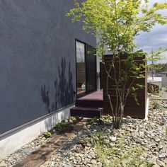 Drought Resistant Landscaping, Modern Foyer, S Style, Interior Garden, Le Far West, Front Entry, Bouldering, Garden Plants, My House