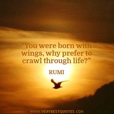 rumi+quotes+and+images | You were born with wings – RUMI Quotes - Inspirational Quotes about ...