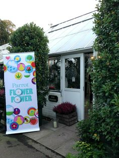 Parrot Flower Power Launch Press Conference in London