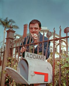 """These Color Photos Of The Original """"Addams Family"""" Cast Will Shatter Your Memories, John Astin , Gomez Addams , Original Addams Family, The Addams Family 1964, Addams Family Tv Show, John Astin, Gomez And Morticia, Morticia Addams, Charles Addams, White Tv, The Munsters"""
