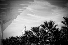 Vista desde el puerto de Malaga