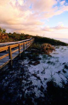 Barefoot Beach Preserve - Naples, Florida