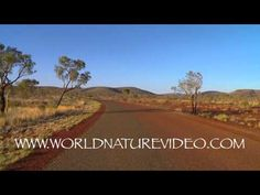 Virtual Jog - Fitness Journeys: Australian Landscapes - Peaceful Road track 1:25