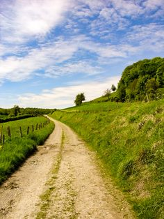 Country road (Normandy, France) by Paul Rosenhart