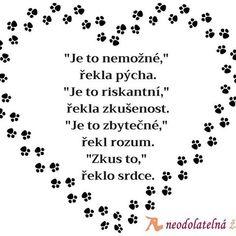 """""""Zkus to,"""" řekla láska ❤️ A pokud zrovna řešíte výzvy ve vztahu, začtěte se do článků, které najdete na blogu partnerskaharmonie.cz .#laska #moudr..."""