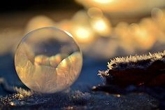 frozen bubbles - gefrorene Seifenblasen
