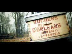 (English subtitles) Nous, immigrants et entrepreneurs à Québec Entrepreneur, English, Bees, Home, English Language