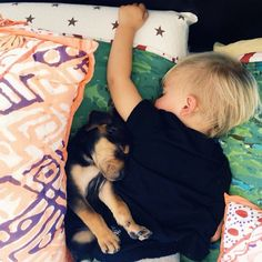 Theo and Beau Napping