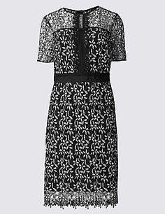 Lace Patterend Lace Shift Dress