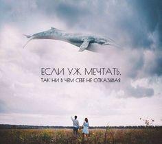 """Цитаты о мечте. """"Стоит ли мечтать?"""" Галина Черевык"""