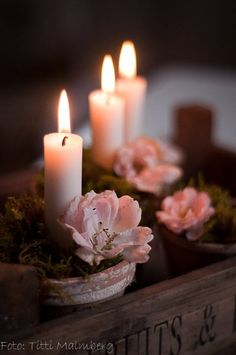❥ candles and flowers ❤❦♪♫