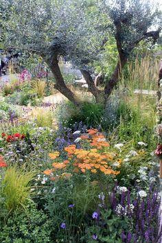"""Four Corners - Silver Gilt medal winner. Beautiful Gardens, Beautiful Flowers, Beautiful Interiors, Landscape Design, Garden Design, Minimalist Garden, Garden Cottage, Fairytale Cottage, Nature Aesthetic"