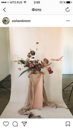 Фотографии Творческие дела – 3 альбома