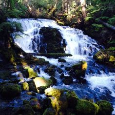 A waterfall outside of Medford Oregon ❤️ #waterfall #oregon #nature