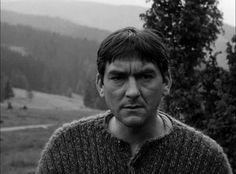 Stefan Kvietik