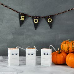 DIY Juice Box Mummie