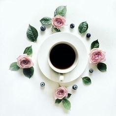 berries, white, and coffee image