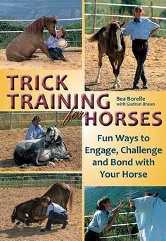 rick Training for Horses: Fun Ways to Engage, Challenge, and Bond with Your Horse Paperback – January 2011 by Bea Borelle (Author), Kristina McCormack (Translator), Gudrun Braun (Contributor) Horse Training Tips, Horse Tips, Dog Training, Training Equipment, Horse Books, Types Of Horses, Equestrian Outfits, Equestrian Style, Equestrian Fashion