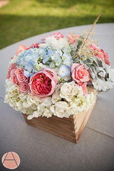 Mais lindas cores de flores!