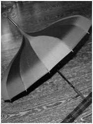Carousel umbrella black