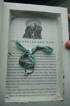 If I didn't think that hollowing out a book is a crime punishable by death.....I would think this is cute.....