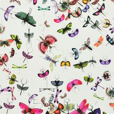 Pair this with emerald green cabinetry in a bath or hall. mariposa - perroquet wallpaper | Christian Lacroix