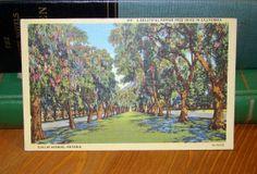 Vintage Postcard, Euclid Avenue Ontario, California 1940s Linen Paper Ephemera