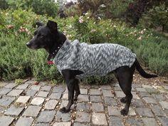 Dog Sweater Hand Knit / greyhound sweater Custom by PepperPetWear Hand Knitted Sweaters, Dog Sweaters, Dog Raincoat, Dog Jacket, Hand Knitting, Pets, Handmade, How To Wear, Animals