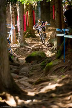 Val di Sole is right up there with Mount St Anne and Ft William when it comes to demanding a complete and focused rider a single mistake at a place like this can have massive consequences. As a photographer the most difficult thing at a place like this is finding a shot that illustrates not only how gnarly the track is but also how graceful and skilled the riders are. This shot of Blenki dancing through this rock and root infested gutter below the main rock garden is one of the few times in…