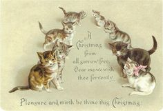 HELENA MAGUIRE ARTIST VICTORIAN CHRISTMAS GREETINGS CARD 8 X LOVELY CATS