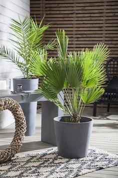Get a trendy terrace with green plants Lush, Pergola, Green Plants, Garden Inspiration, Garden Ideas, Go Outside, Decoration, Planters, Patio