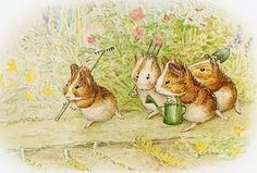 This is a illustration of Beatrice Potter, about Gardening Guinea Pigs!