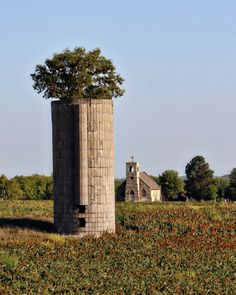Nature Takes Over; Morris County, KS;Picture Perfect Prairie; LIKE, COMMENT, OR SHARE TO VOTE!
