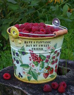 bucket of raspberries...heavenly