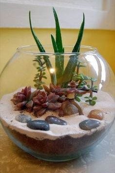 39 DIY Sand Art Terrarium Ideas & Projects Everyone Will Love - Indoor Succulents wedding Terrarium succulentes Cactus Terrarium, Garden Terrarium, Glass Terrarium Ideas, Terrarium Wedding, Succulent Gardening, Cacti And Succulents, Planting Succulents, Container Gardening, Air Plants