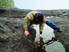 Changes in ocean chemistry threaten Washington state's Makah tribe as well as the region's shellfish industry